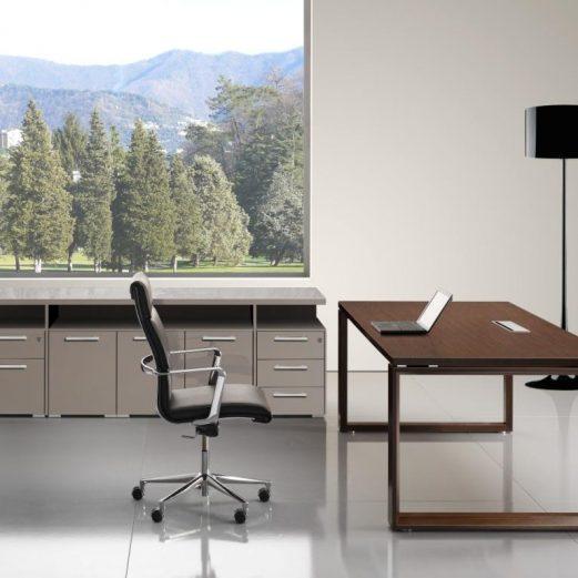 Arche Executive Desk Wood Veneer Top