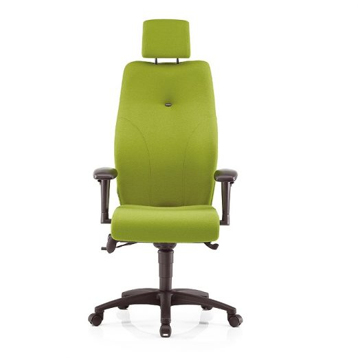 Ergonomic Office Chairs - Posture Chairs