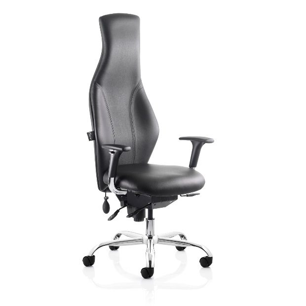 Physio 24 Hour Task Chair
